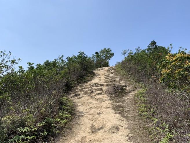 Hiking 16.2.2019 Kai Kung Shan (33)
