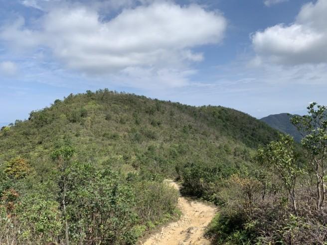 Hiking 16.2.2019 Kai Kung Shan (38)