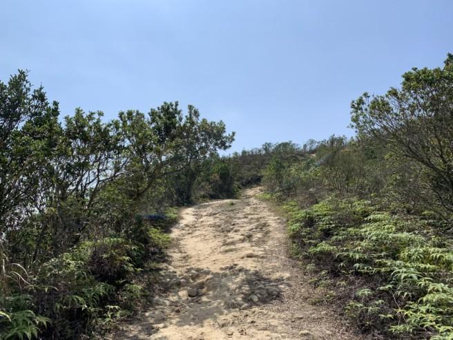 Hiking 16.2.2019 Kai Kung Shan (39)