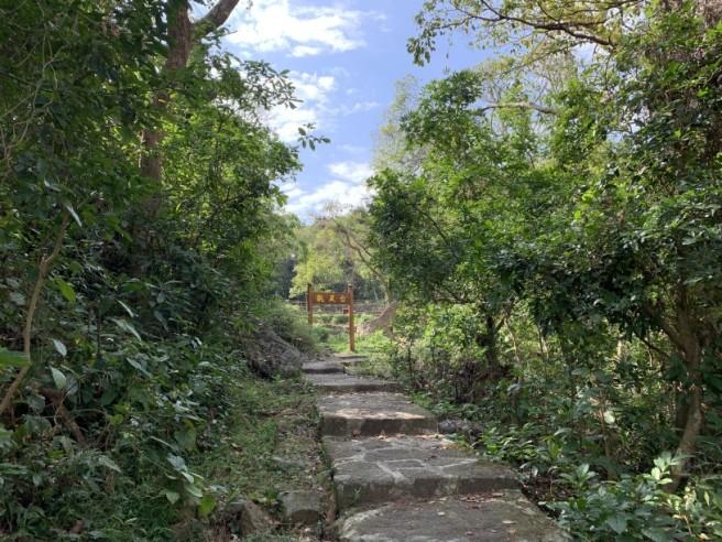 Hiking 16.2.2019 Kai Kung Shan (4)