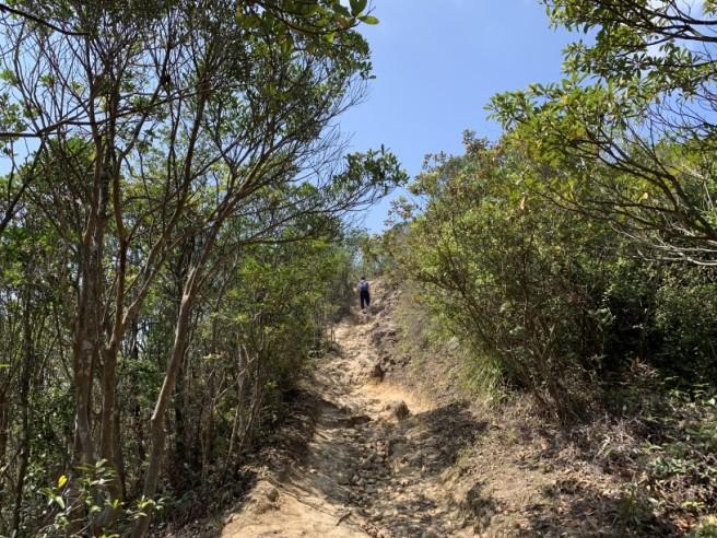 Hiking 16.2.2019 Kai Kung Shan (46)