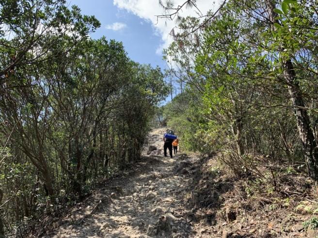 Hiking 16.2.2019 Kai Kung Shan (47)