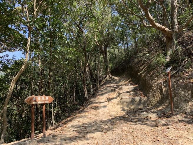 Hiking 16.2.2019 Kai Kung Shan (48)