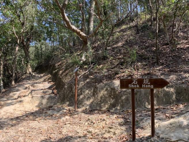 Hiking 16.2.2019 Kai Kung Shan (49)