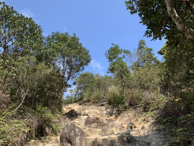 Hiking 16.2.2019 Kai Kung Shan (52)