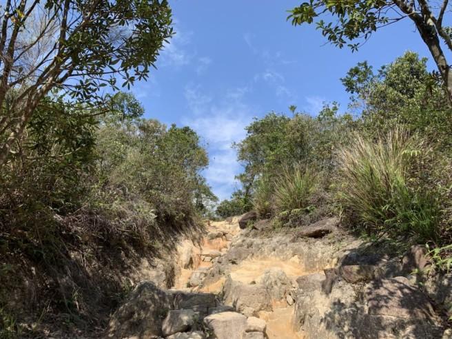 Hiking 16.2.2019 Kai Kung Shan (53)