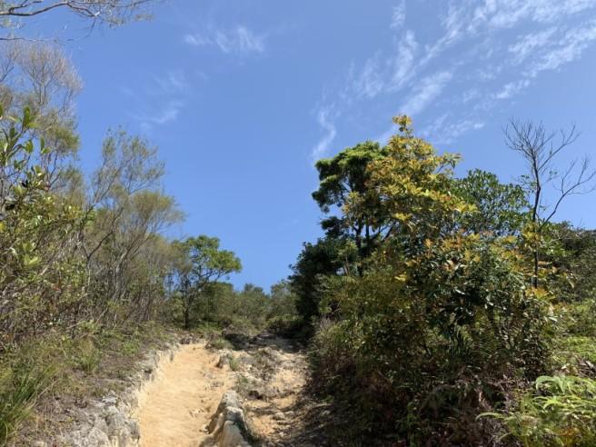 Hiking 16.2.2019 Kai Kung Shan (54)