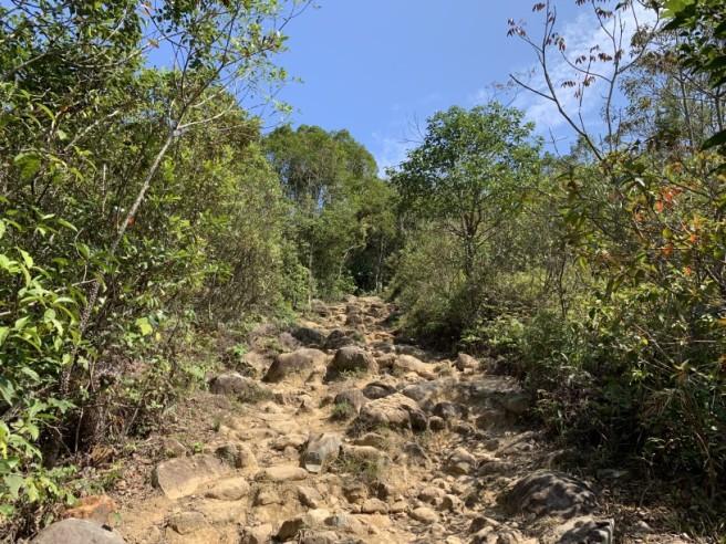 Hiking 16.2.2019 Kai Kung Shan (57)
