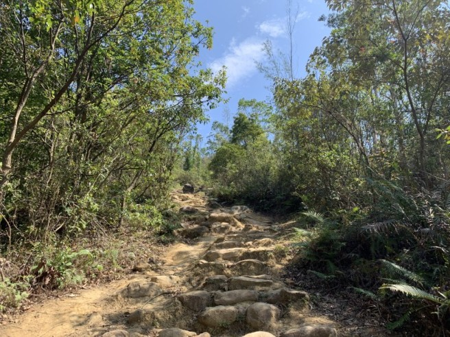 Hiking 16.2.2019 Kai Kung Shan (58)