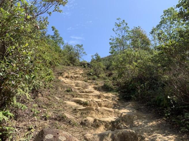 Hiking 16.2.2019 Kai Kung Shan (59)
