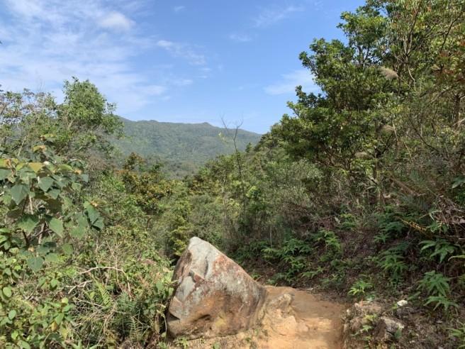 Hiking 16.2.2019 Kai Kung Shan (62)