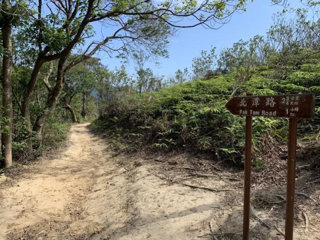 Hiking 16.2.2019 Kai Kung Shan (64)