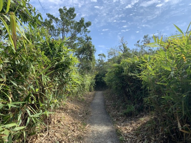 Hiking 16.2.2019 Kai Kung Shan (71)