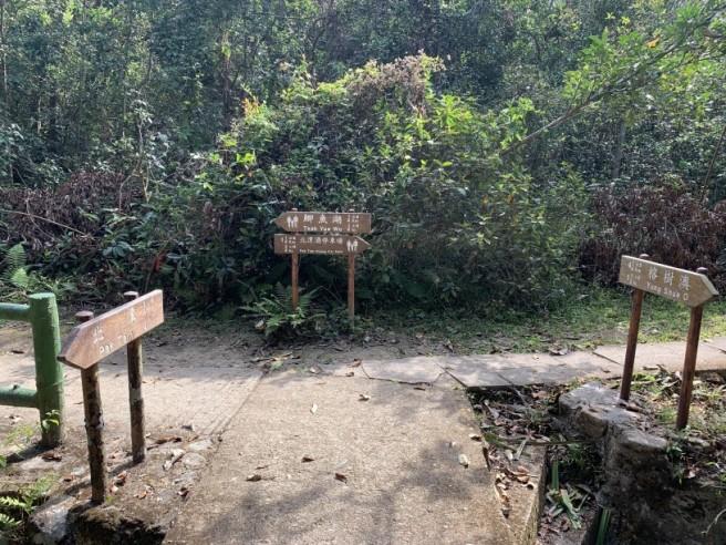 Hiking 16.2.2019 Kai Kung Shan (72)