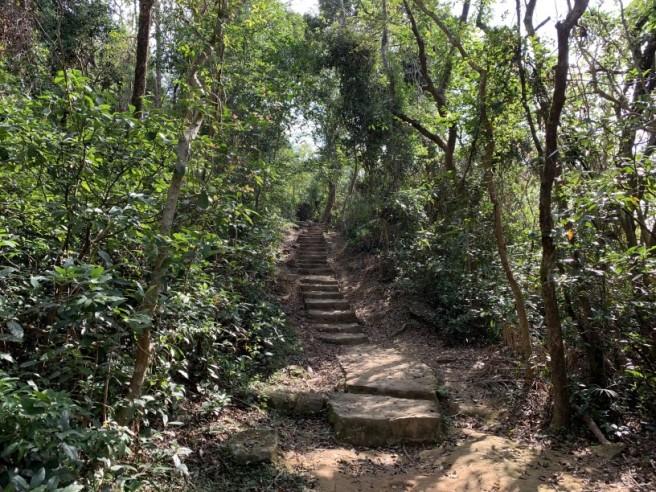 Hiking 16.2.2019 Kai Kung Shan (8)