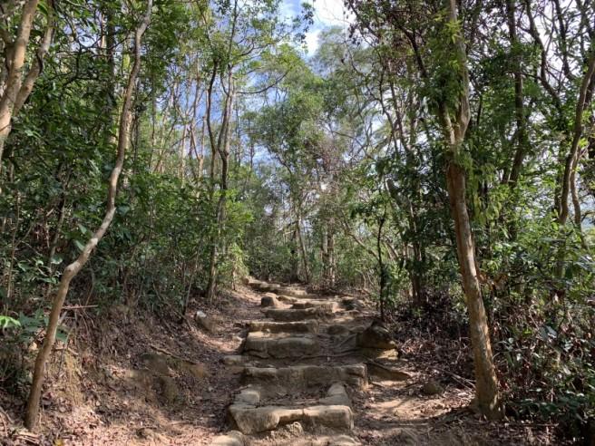 Hiking 16.2.2019 Kai Kung Shan (9)