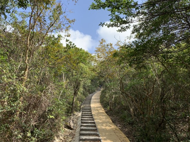 Hiking 7.2.2019 Kam Kui Shek Teng (11)