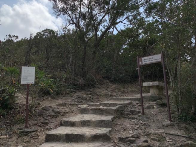 Hiking 7.2.2019 Kam Kui Shek Teng (12)