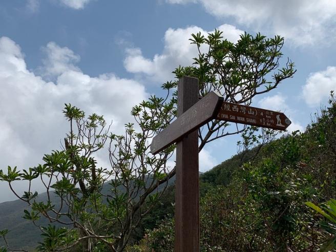 Hiking 7.2.2019 Kam Kui Shek Teng (13).jpg