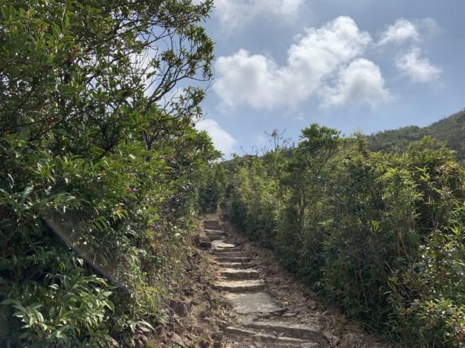 Hiking 7.2.2019 Kam Kui Shek Teng (14)
