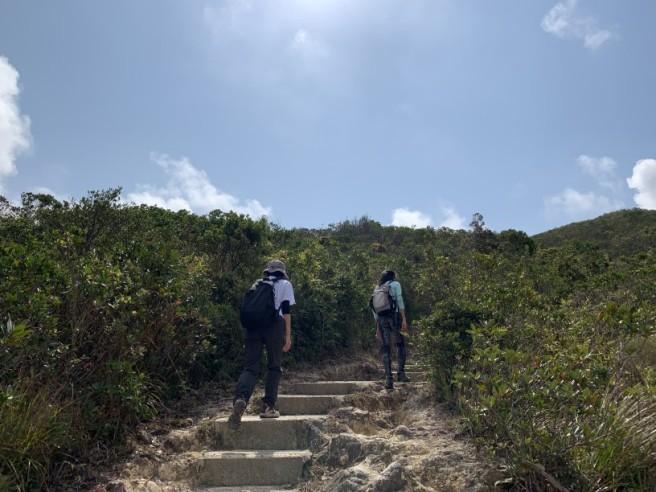 Hiking 7.2.2019 Kam Kui Shek Teng (15)
