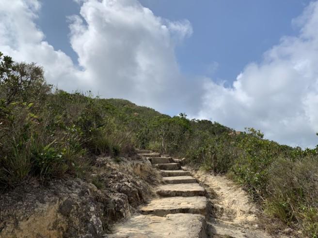 Hiking 7.2.2019 Kam Kui Shek Teng (17)