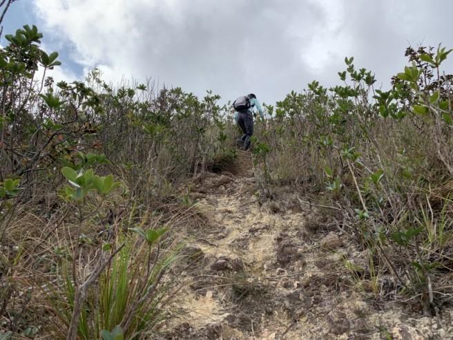 Hiking 7.2.2019 Kam Kui Shek Teng (20)