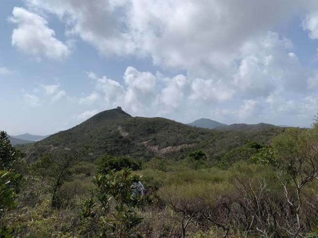 Hiking 7.2.2019 Kam Kui Shek Teng (24)