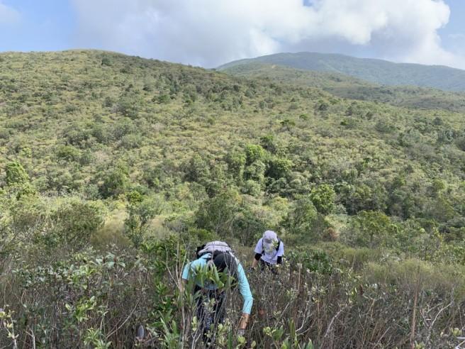 Hiking 7.2.2019 Kam Kui Shek Teng (25)