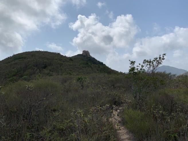 Hiking 7.2.2019 Kam Kui Shek Teng (29)