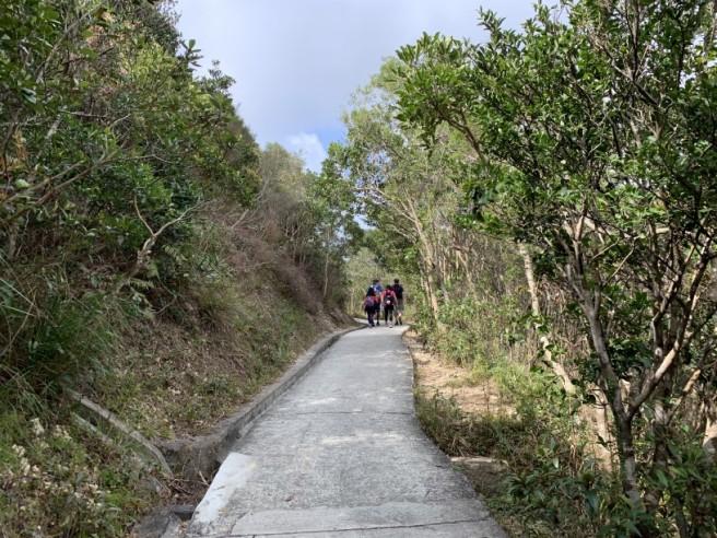Hiking 7.2.2019 Kam Kui Shek Teng (4)