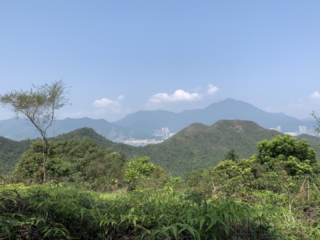 Hiking 12.3.2019 Pan Pui Teng (25)
