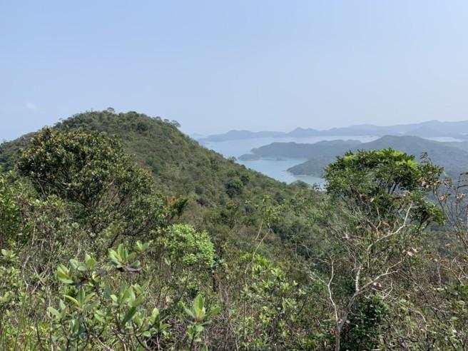 Hiking 12.3.2019 Pan Pui Teng (26)