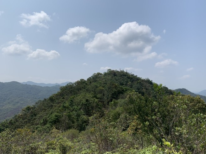 Hiking 12.3.2019 Pan Pui Teng (31)