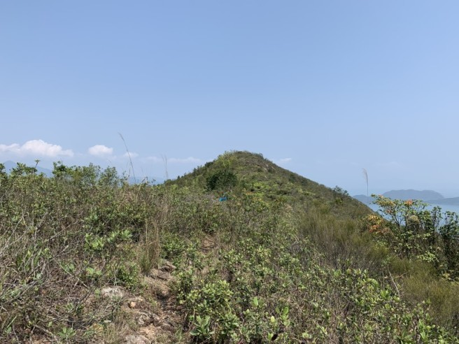 Hiking 12.3.2019 Pan Pui Teng (36)
