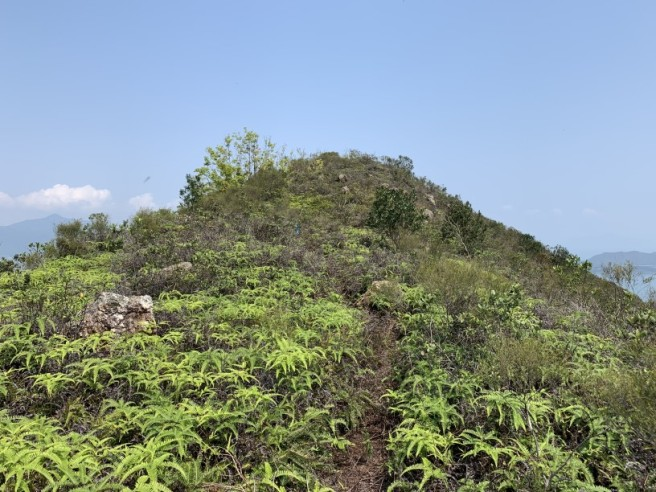 Hiking 12.3.2019 Pan Pui Teng (37)