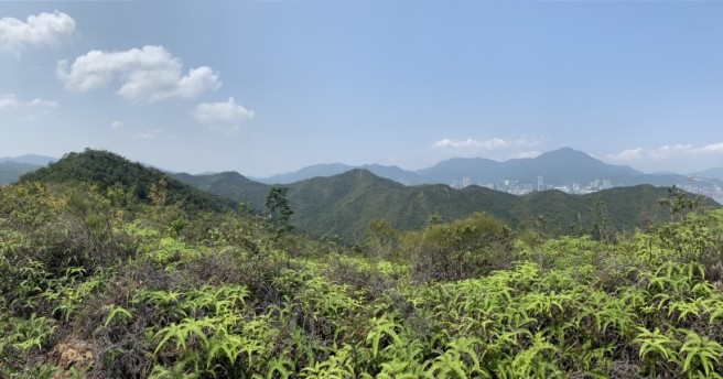 Hiking 12.3.2019 Pan Pui Teng (38)