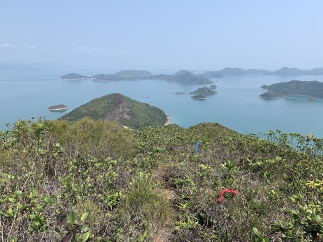 Hiking 12.3.2019 Pan Pui Teng (46)