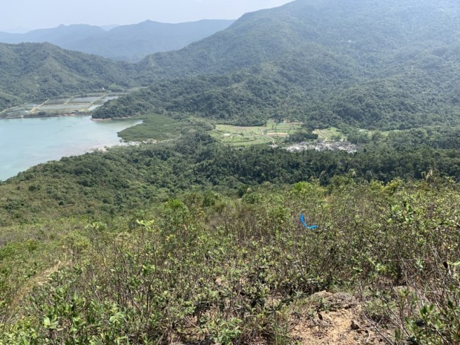 Hiking 12.3.2019 Pan Pui Teng (55)