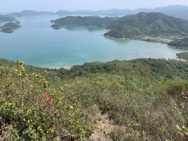 Hiking 12.3.2019 Pan Pui Teng (56)