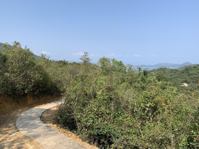 Hiking 12.3.2019 Pan Pui Teng (70)