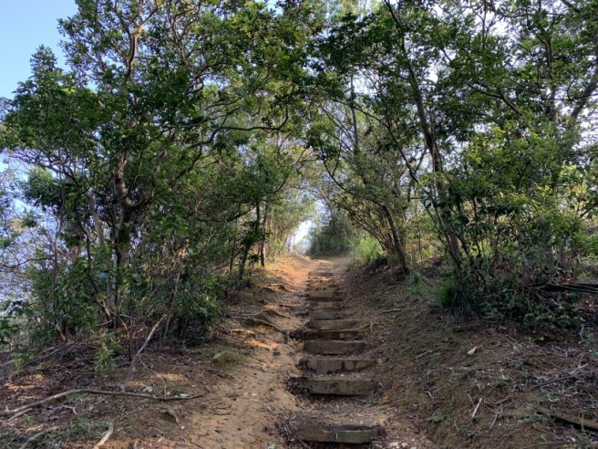 Hiking 12.3.2019 Pan Pui Teng (87)