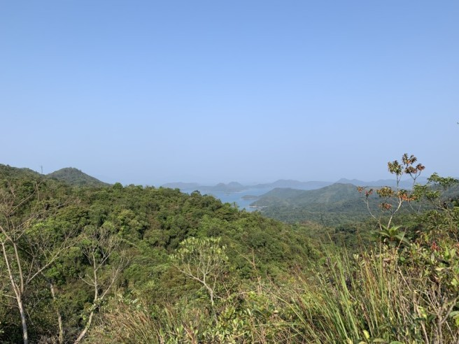 Hiking 12.3.2019 Pan Pui Teng (89)