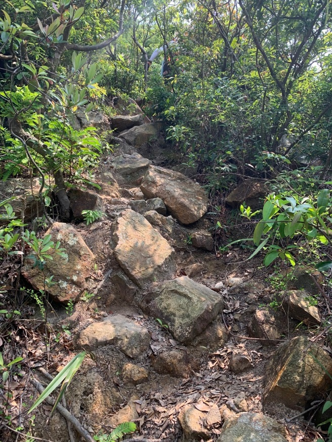 Hiking 6.4.2019 West Kau Nga Ling (17)