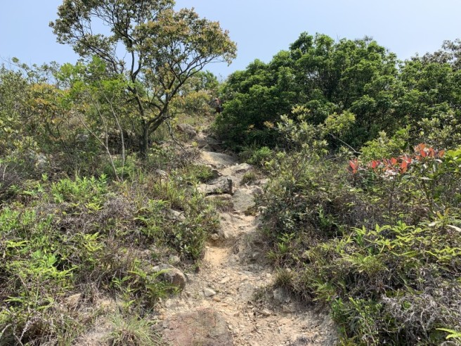 Hiking 6.4.2019 West Kau Nga Ling (19)