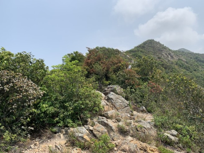 Hiking 6.4.2019 West Kau Nga Ling (21)