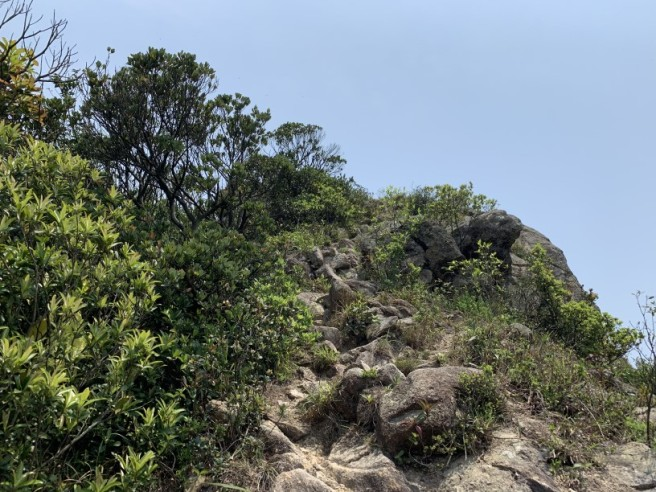 Hiking 6.4.2019 West Kau Nga Ling (35)