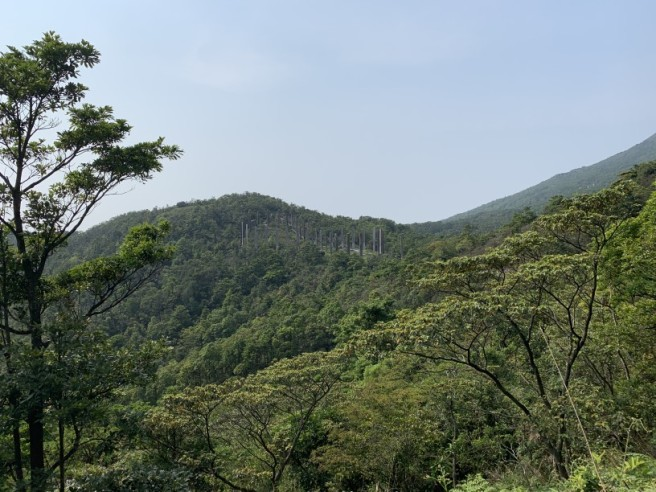 Hiking 6.4.2019 West Kau Nga Ling (74)