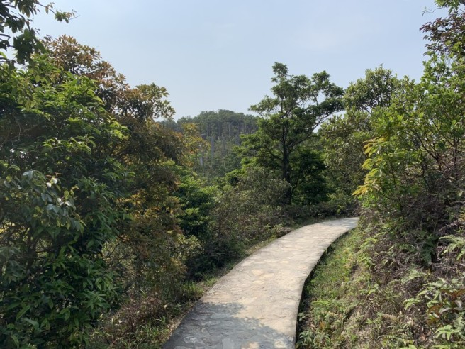 Hiking 6.4.2019 West Kau Nga Ling (75)