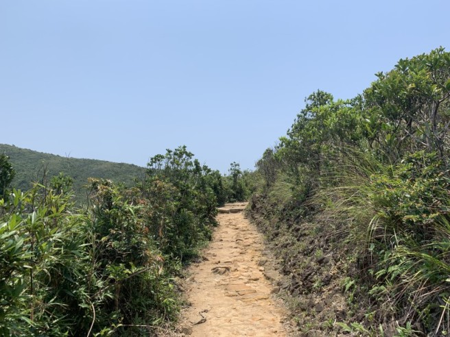 Hiking 11.5.2019 Tuk Ngu Shan (12)